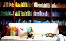 Ev ve Ofis İçin Kütüphane Fikirleri