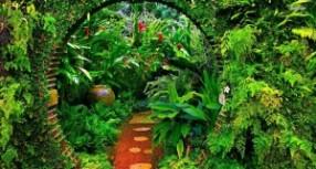 Bahçe dekorasyon alternatifleri