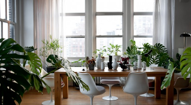 Ev Aksesuarları ve Modern Ev Dizaynı