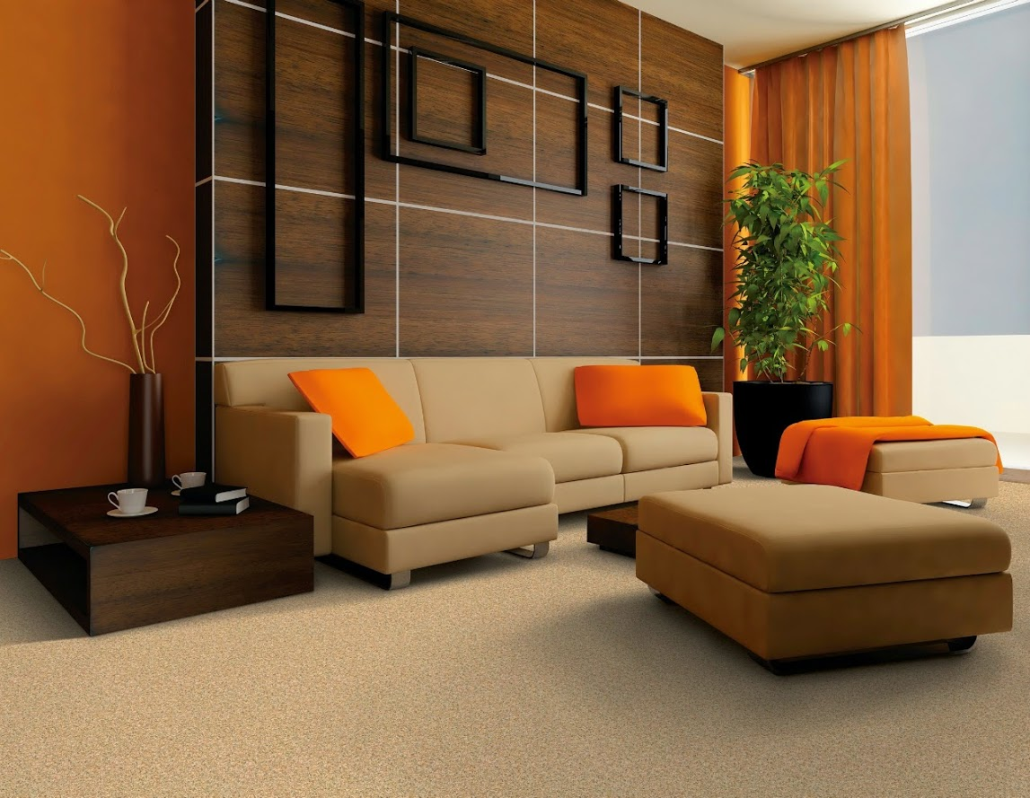 modern-ev-tasarim-ornekleri (2)