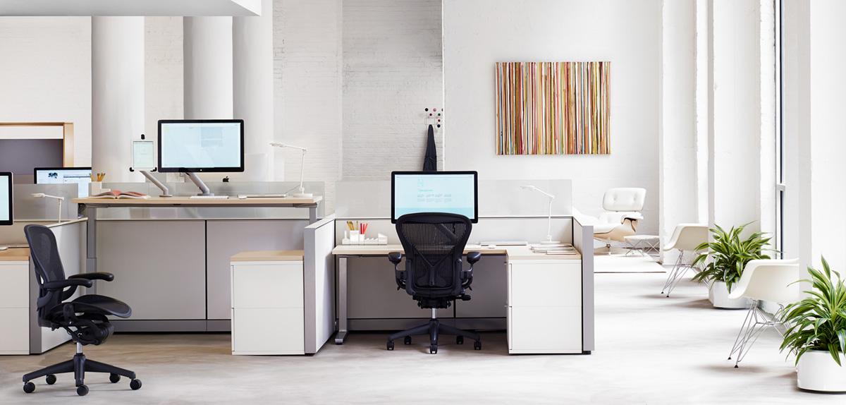 ofis-dekorasyonlari
