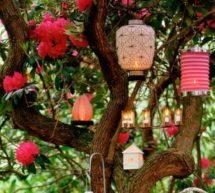 Kendinize Özel Bahçeler Yaratın